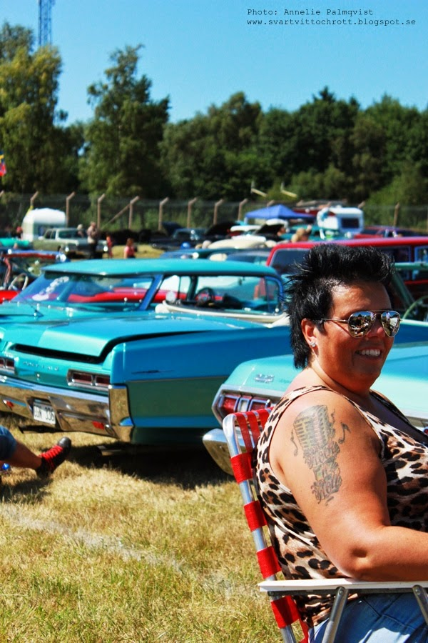 Wheels & Wings 2014, bilträff, falkenberg, bilder, bild, 2014, falkenbergs motorbana, amerikanska bilar, amerikanare,