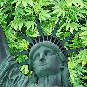Nova York legalizando maconha medicinal