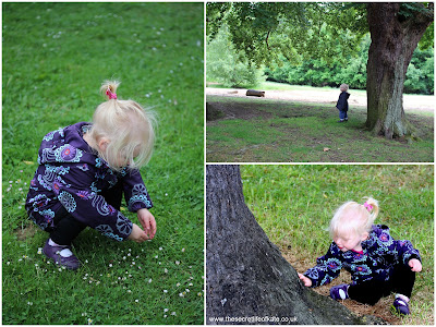 A toddler looks at daisies, stands under a tree and strokes a tree
