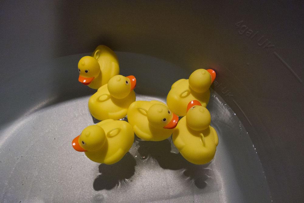 Waltzers, friends and rubber ducks! | Joe Browns Blogger Funfair