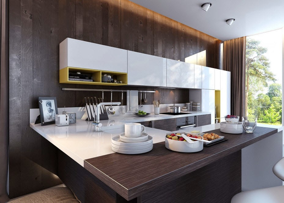 Design of kitchen with contrast 2