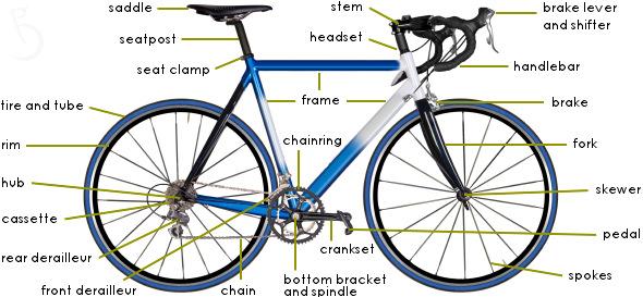Love  Noelle  Sock Lines  Road Signs And Broken Bikes