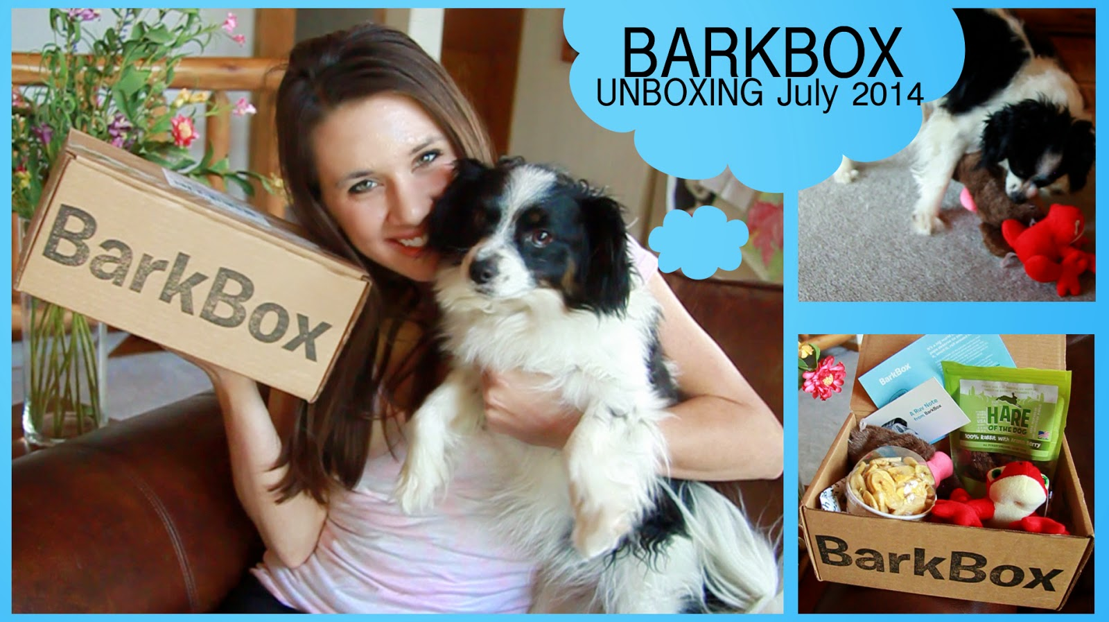barkbox unboxing july 2014