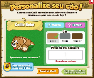 Personalize Pet