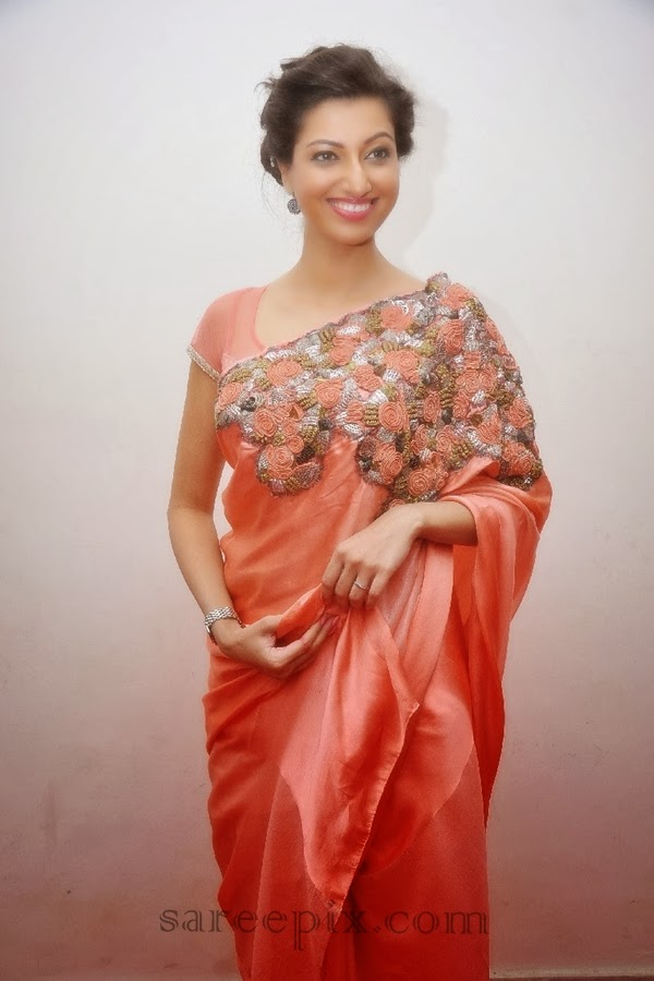 Hamsa nandini saree legend audio launch
