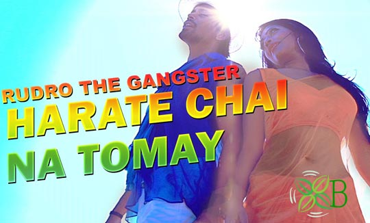 Harate Chai Na Tomay from Rudra - The Gangster Movie