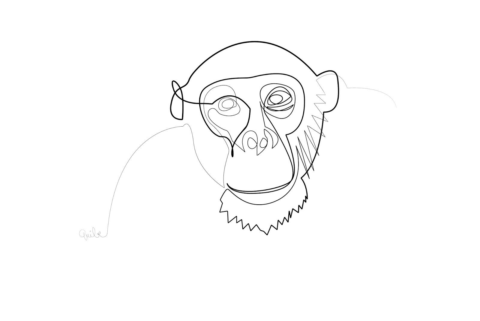Line Drawing Monkey : One line monkey le tophe illustré