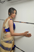 Sanjjana Latest Glam pics in saree-thumbnail-6