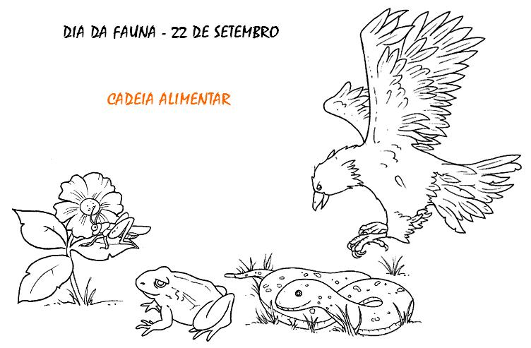 DIA DA FAUNA DESENHOS E ATIVIDADES PARA COLORIR IMPRIMIR VII