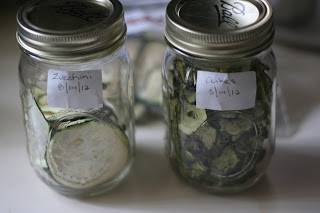 the cucumber pickle from dehydrated cucumber experiment