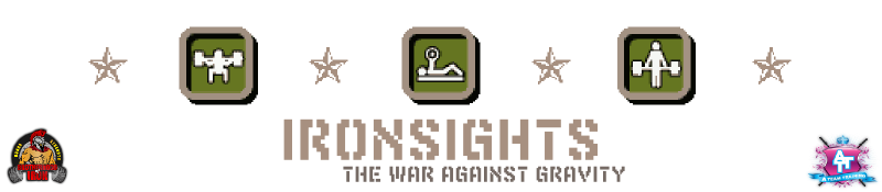 ­Ironsights