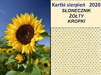 sierpień-słonecznik