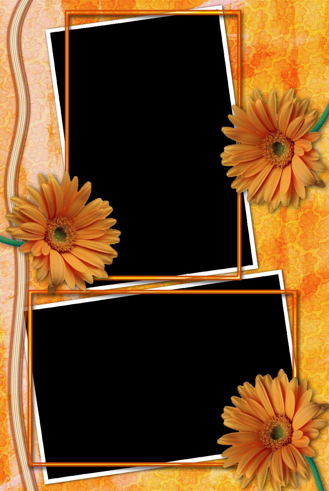 рамки для коллажа на 2 фото