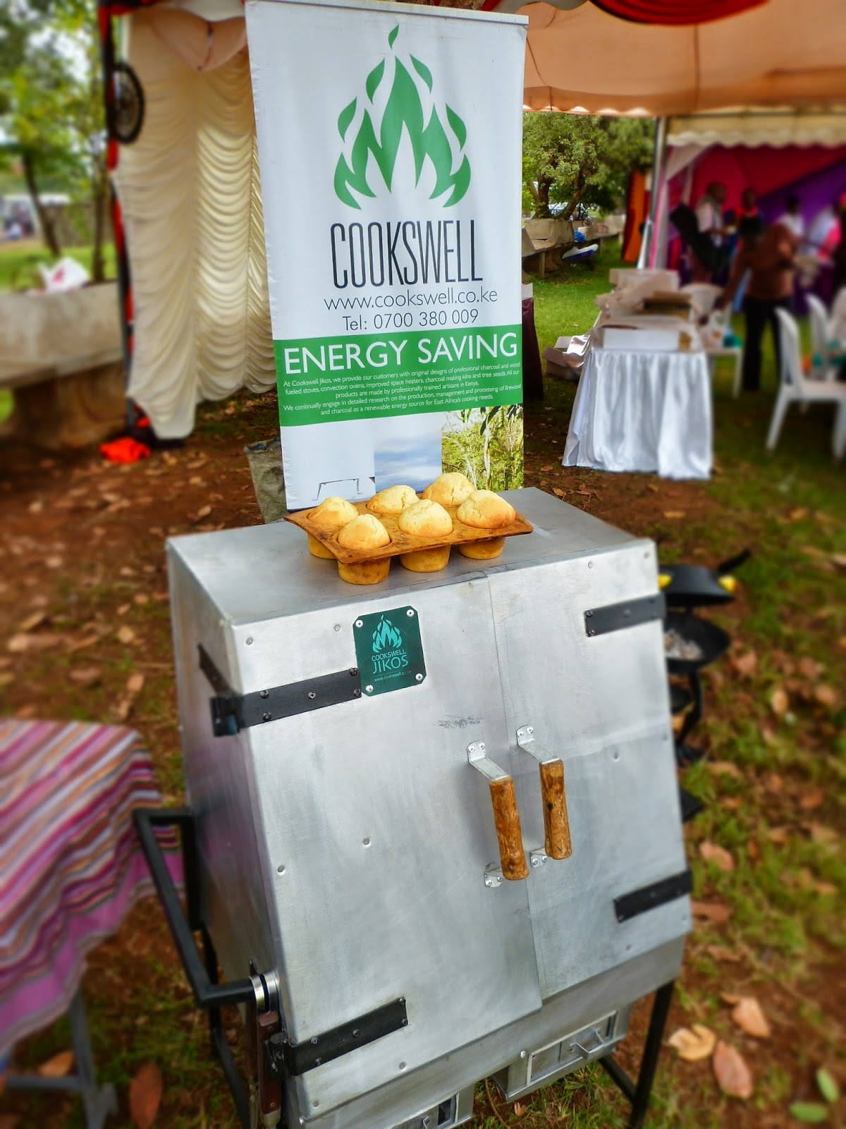 Cake Art Festival Nairobi : Renewable Energy Solutions Kenya