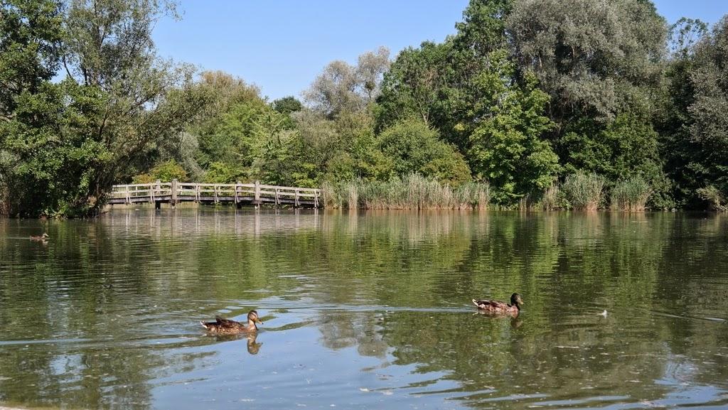 Lagos - Park im Grünen - Basel Suíça