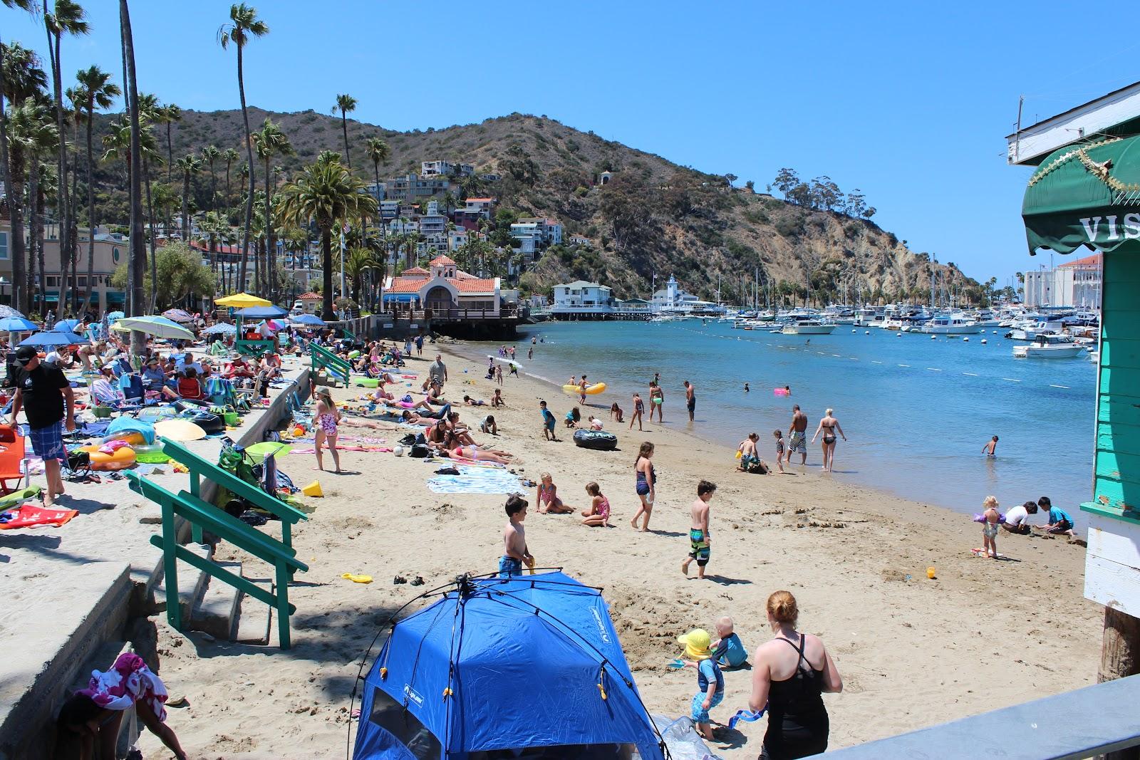 Catalina island flyer catalina island summer 2012 for The catalina