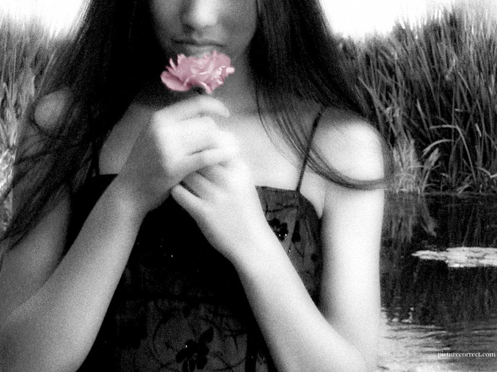 http://4.bp.blogspot.com/-zQGWnuy9_g8/Telk-73trdI/AAAAAAAAD5g/zEOSiVlVr1w/s1600/smell.jpeg