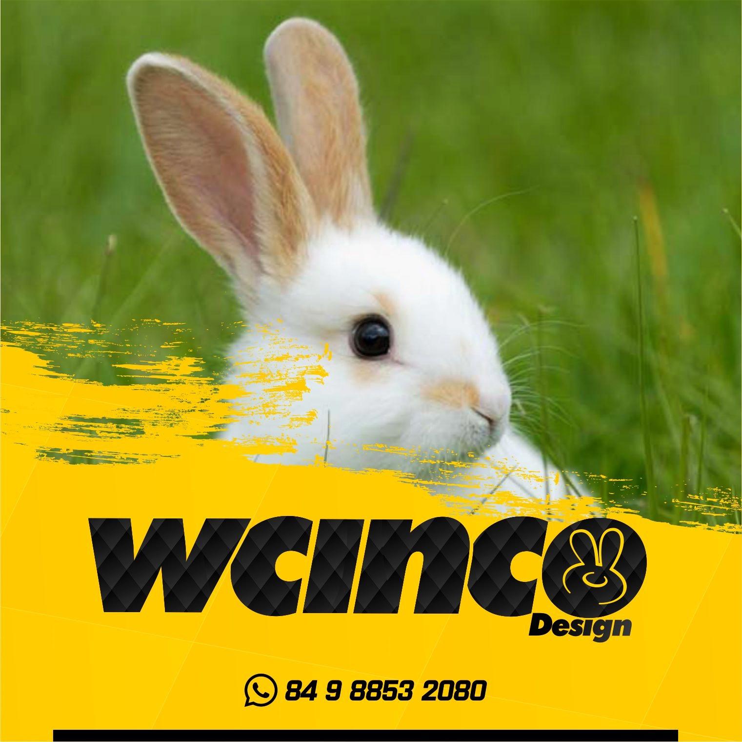 WCINCO design