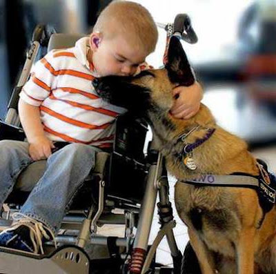 THE TOUCHING STORY OF A SICK BOY & HIS RESCUE DOG
