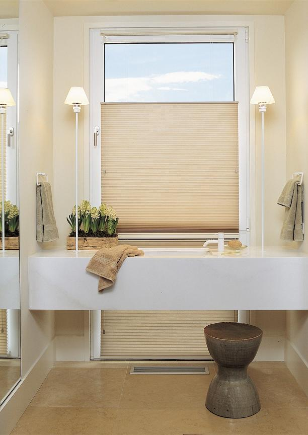 The Bind Alley   Hunter Douglas Duette Honeycomb Shade