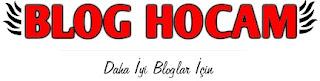 Blog Hocam 2013 Logosu
