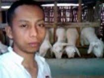 Ternak Kambing tanpa ngarit kang zainal setelah 2 minggu bobot bertambah 8 Kg - YouTube