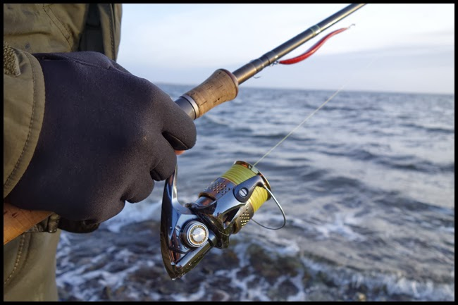 havsöringsfiske