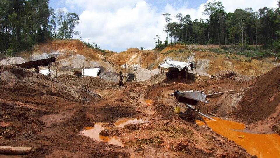 No a la minería del oro en Guyana