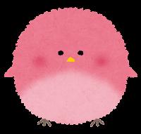 丸い鳥のイラスト「ピンク」