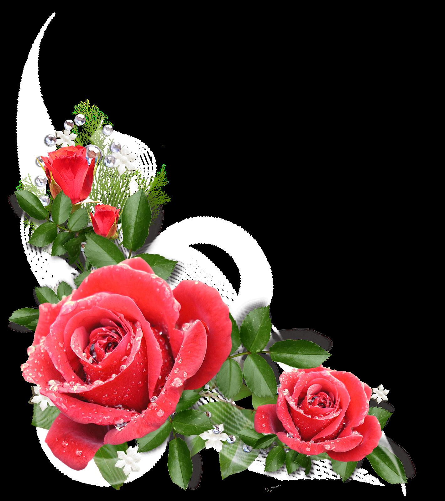 Marcos Para Fotos De Flores