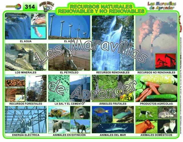 Clases de ecosistemas yahoo dating 1