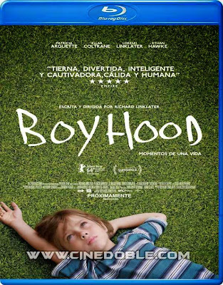 Boyhood (2014) 1080p Latino