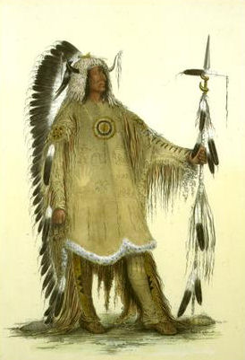 essay on the beothuk Home newfoundland and labrador the vikings in north america  it is not for sure but some historians believe that these natives were beothuk indians who are the.