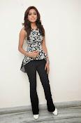 Vithika sheru latest glam pics-thumbnail-11