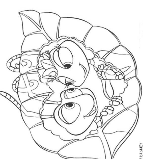 june bug coloring pages - photo#11