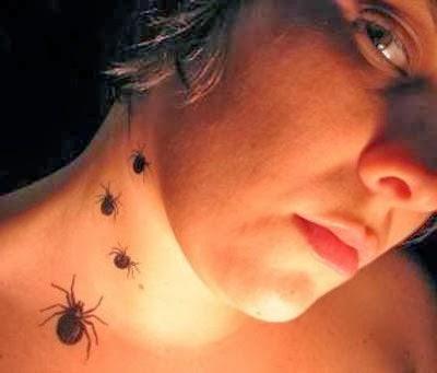 Tatuagens de aranha delicadas no pescoço