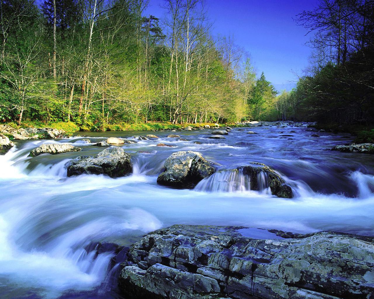 http://4.bp.blogspot.com/-zTLPk8b6DUk/TdkvfA3WycI/AAAAAAAAAcA/Rcuez6HCC04/s1600/1280_1024_nature_scene_wallpaper_1600FG100_2_083.jpg