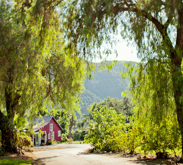 san diego wedding venue whispering meadows