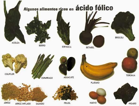 dietética naturel: vitamina b9 o Ácido fólico