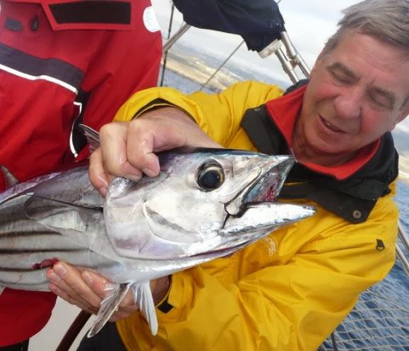 разрешение рыбной ловли весной
