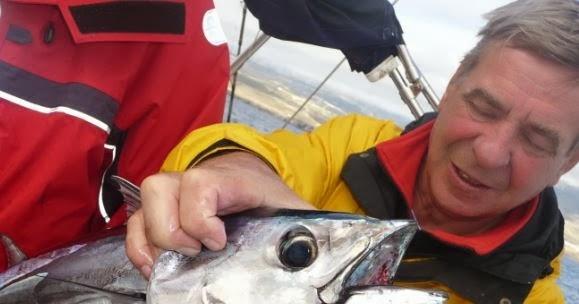 рыбалка в хорватии бесплатно