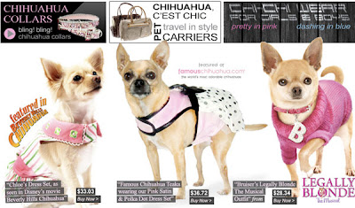 chihuahua-dog-clothes