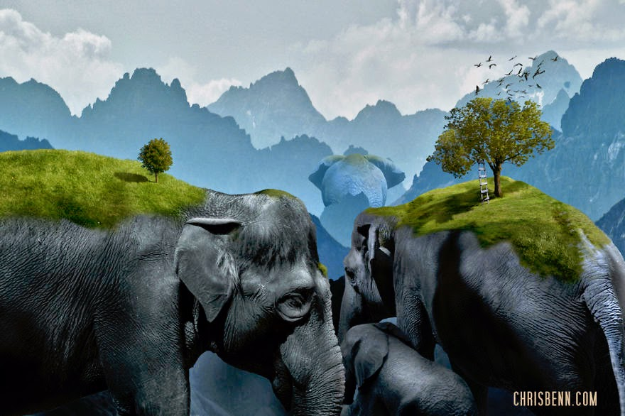 04-Hannibal-Chris-Bennett-Animal-Photographs-of-Surreal-Art-www-designstack-co