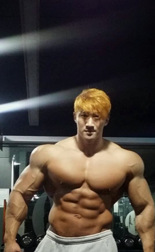 Hwang Chul Soon Bodybuilder