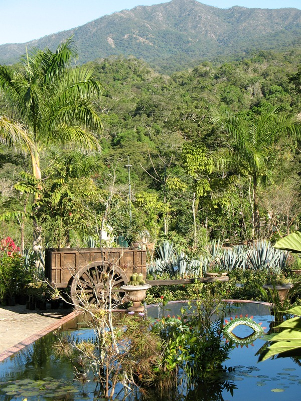 Eagle eye adventures june 2013 - Puerto vallarta botanical gardens ...