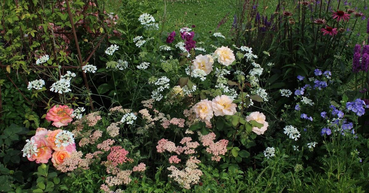 Derri re les murs de mon jardin projet d automne le for Derriere les murs de mon jardin