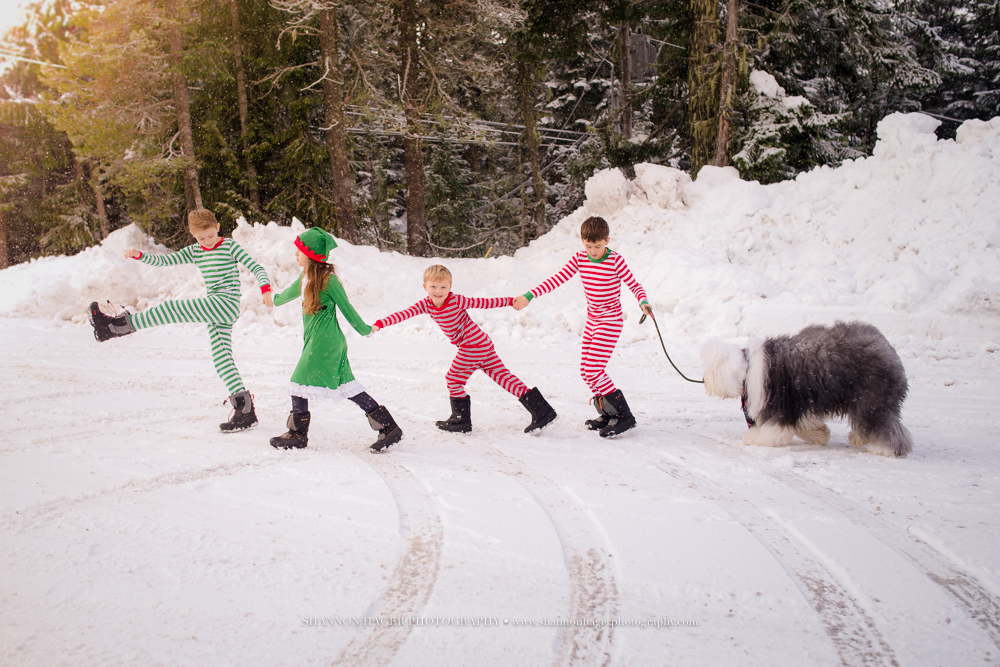 old english sheepdog, shannon hager photography, snow pj's kids