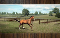 Blog Safari club, juego android My horse