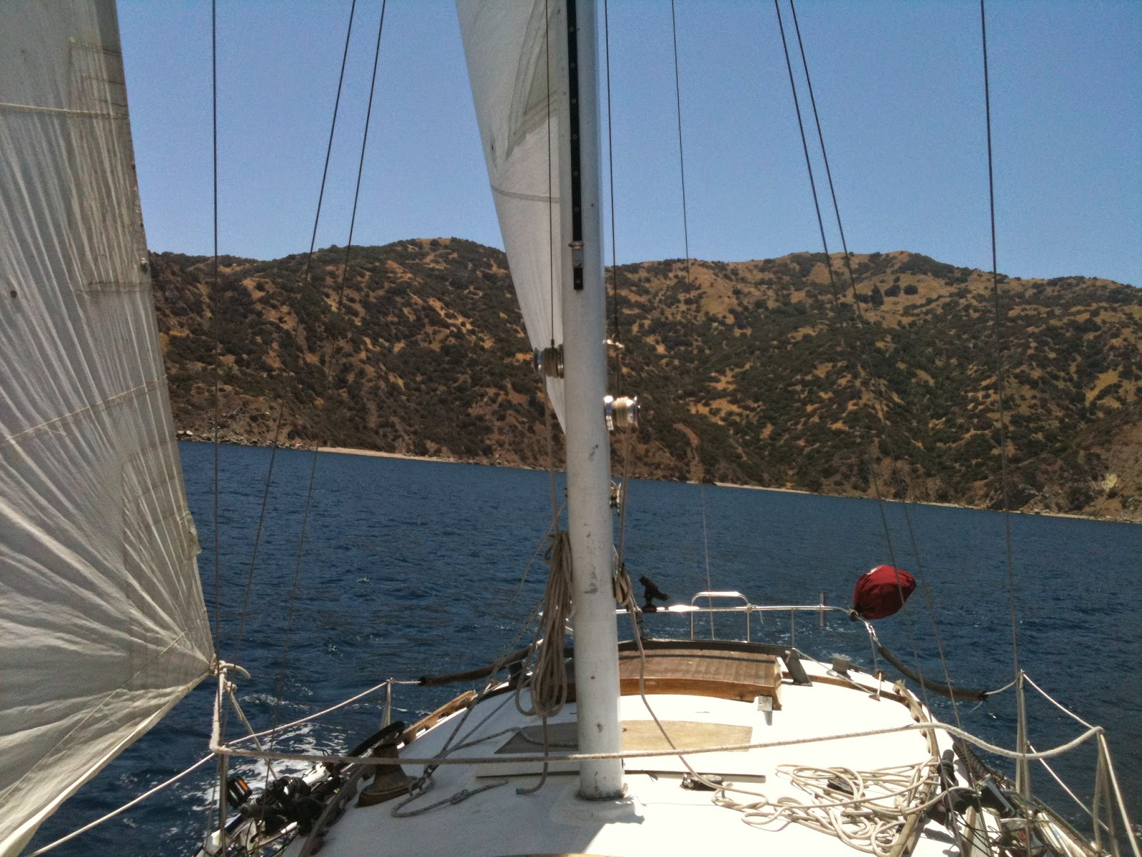 solo sailing to catalina