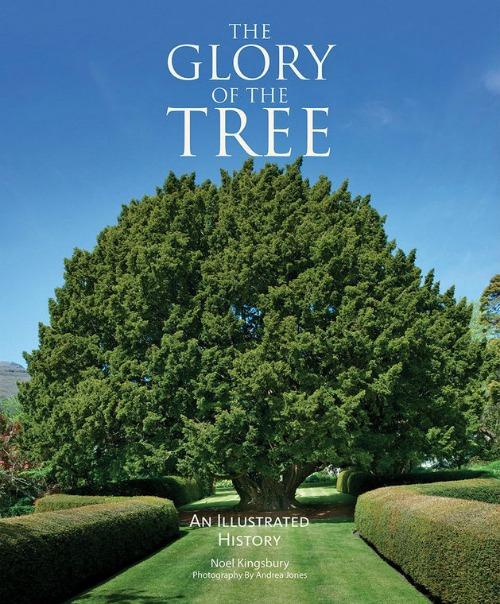 """""""Homenaje a los árboles""""  Una celebración del asombro, el misterio, la belleza y la utilidad de los árboles. Noel Kingsbury y Andrea Jones traducción de The Glory ot the tree. an illustrated history."""